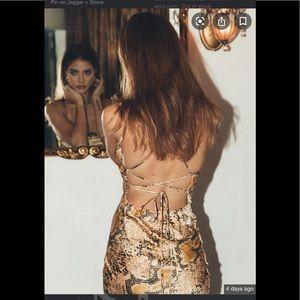 Nwot Jagger & Stone snake skin print dress